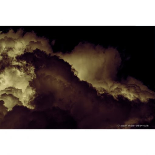 Rebirthed. Limited edition fine art photo 8683 for sale - Stephen S T Bradley